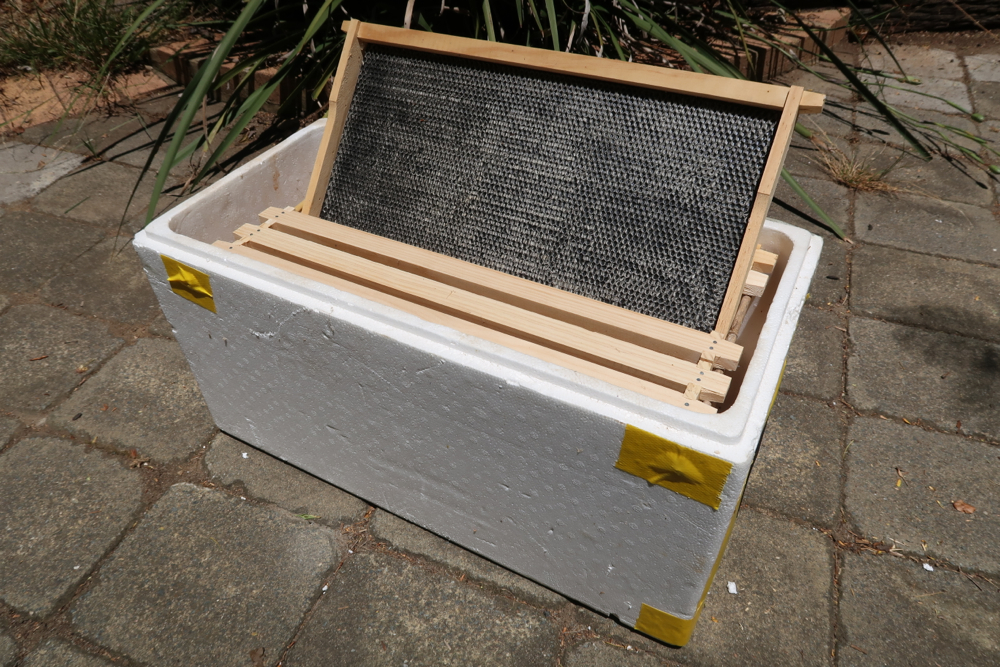 canberrabees com Beekeeping