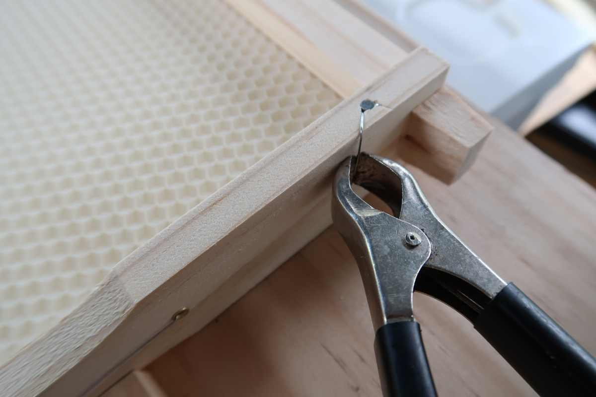 canberrabeescom wiring a bee hive frame with basic tools